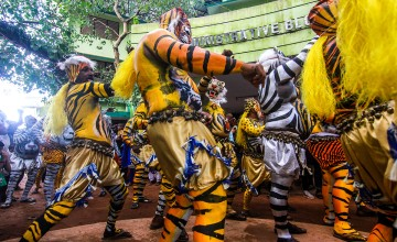 A Glimpse Into The Way Of The Tiger At The  Thrissur Pulikali