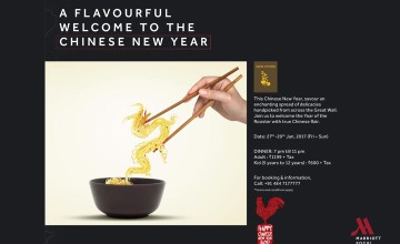 A Flavourful Welcome to the Chinese New Year - Food Fest
