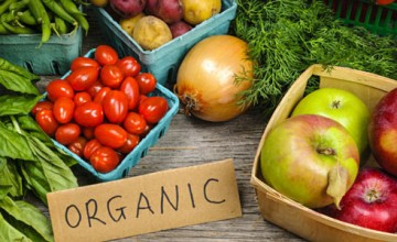 Organic Vegetable Fair at Kochi