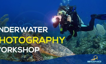 Kerala's First Underwater Photography Workshop