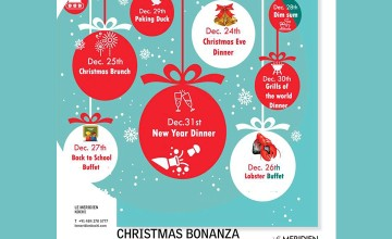Christmas Bonanza - Food and Fun