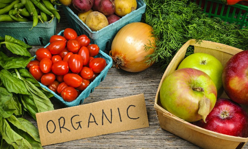 9 Organic Stores Around Kochi That Provide Quality Toxin-Free Produce