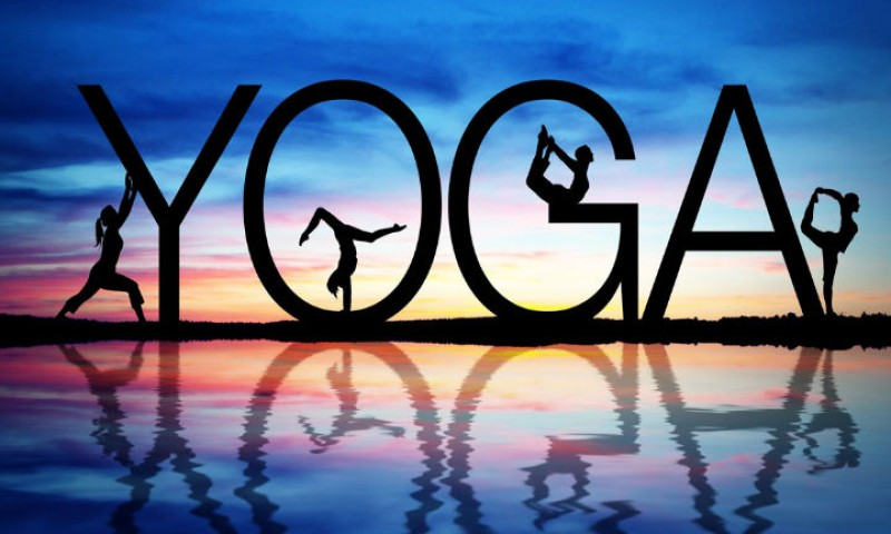 Channel Your Inner Animal With These 16 Yoga Poses on International Yoga Day