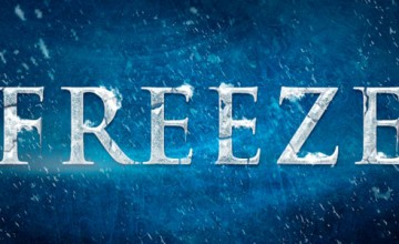 Freeze Mob at Kochi