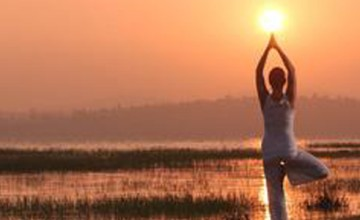 Yoga Wellness Immersion in South INDIA
