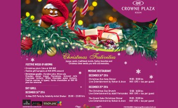 Christmas Festivities and Offers