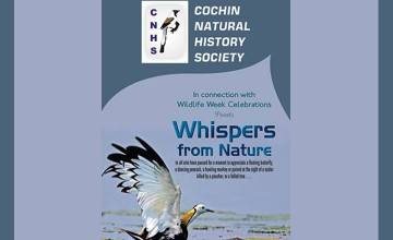Whispers From Nature - Photo exhibition