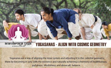 Yogasanas - Hatha Yoga Workshop
